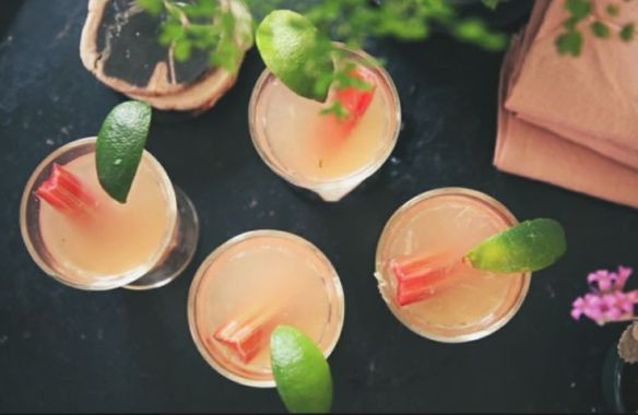 image via http://www.shopterrain.com/article/video-recipe-rhubarb-hops-mojito?crlt.pid=camp.e69YjvwV9O4t
